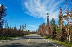 Φυσική εθνική οδός μεταξύ Yellowstone και των μεγάλων εθνικών πάρκων Teton Στοκ φωτογραφία με δικαίωμα ελεύθερης χρήσης