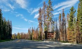 Φυσική εθνική οδός μεταξύ Yellowstone και των μεγάλων εθνικών πάρκων Teton Στοκ Εικόνες