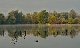 Φυσική ελώδης περιοχή κατά τη διάρκεια του χρόνου φθινοπώρου στοκ φωτογραφίες με δικαίωμα ελεύθερης χρήσης