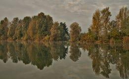 Φυσική ελώδης περιοχή κατά τη διάρκεια του χρόνου φθινοπώρου στοκ εικόνες με δικαίωμα ελεύθερης χρήσης