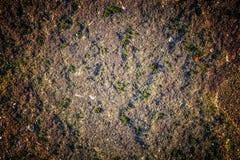 Φυσική επιφάνεια σύστασης σκληρής ροκ ή πετρών ως υπόβαθρο Στοκ Φωτογραφία