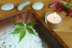 φυσική θεραπεία ομορφιά&sigm Στοκ εικόνα με δικαίωμα ελεύθερης χρήσης