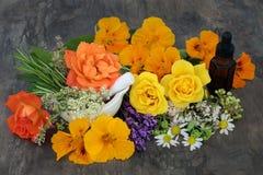 Φυσική θεραπεία λουλουδιών και χορταριών Στοκ Εικόνες