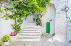 Φυσική θερινή άποψη σε Ostuni, επαρχία του Μπρίντιζι, Apulia, Ιταλία Στοκ Φωτογραφίες