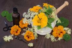 Φυσική ιατρική λουλουδιών και χορταριών Στοκ εικόνα με δικαίωμα ελεύθερης χρήσης