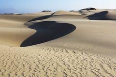 Φυσική κονσέρβα αμμόλοφων Oceano, Καλιφόρνια Στοκ εικόνες με δικαίωμα ελεύθερης χρήσης