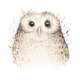 Φυσική κουκουβάγια boho φτερών πουλιών Watercolor Βοημίας αφίσα κουκουβαγιών Απεικόνιση boho φτερών για το σχέδιό σας Ανοιχτό μπλ