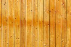 Φυσική ξύλινη σύσταση υποβάθρου Στοκ Φωτογραφία