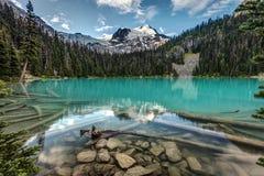 Φυσική ομορφιά της Βρετανικής Κολομβίας Στοκ εικόνα με δικαίωμα ελεύθερης χρήσης