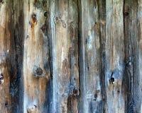 Φυσική παλαιά ξύλινη κατακόρυφος υποβάθρου στοκ φωτογραφία με δικαίωμα ελεύθερης χρήσης