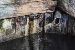Φυσική πηγή νερού στα βουνά Πέφτει από έναν φλοιό δέντρων Στοκ Φωτογραφίες