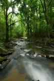 Φυσική πτώση νερού ρευμάτων στη ζούγκλα Στοκ Φωτογραφίες