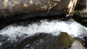 Φυσική πτώση νερού Στοκ Φωτογραφίες