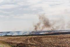 Φυσική πυρκαγιά ή πυρκαγιά στους τομείς περιοχών του Ροστόφ Στοκ Φωτογραφίες