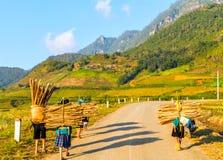 φυσική σειρά βουνών τοπίων, λαοτιανή επαρχία CAI, Βιετνάμ Στοκ Εικόνα