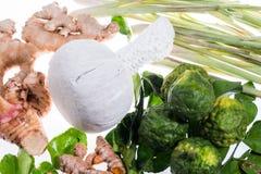 Φυσική σφαίρα μασάζ χορταριών θεραπείας αρώματος Στοκ Εικόνα