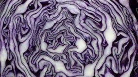 φυσική σύσταση λάχανων στοκ εικόνες