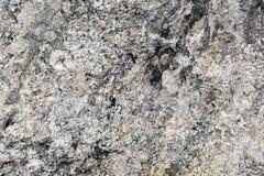 φυσική σύσταση πετρών ανασ Στοκ Φωτογραφία