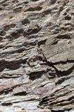 Φυσική σύσταση πετρών Μπορέστε να χρησιμοποιηθείτε ως υπόβαθρο στοκ εικόνες