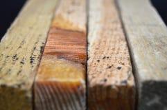 Φυσική σύσταση σανίδων ξύλου πεύκων Σιτάρι, κάλυψη στοκ φωτογραφίες με δικαίωμα ελεύθερης χρήσης