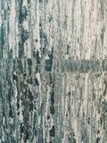 φυσική σύσταση φλοιών ανασκόπησης Στοκ Φωτογραφία