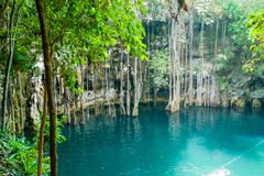 Φυσική τρύπα αποχέτευσης Yucatan στοκ φωτογραφία με δικαίωμα ελεύθερης χρήσης
