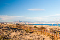 φυσική φύση βουνών τοπίων της Αλμερία Ανδαλουσία αγαύης cabo de desert gata κοντά στο φυτό ισπανικά πάρκων Στοκ εικόνα με δικαίωμα ελεύθερης χρήσης