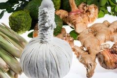 Φυσική herb spa θεραπεία σφαιρών μασάζ Στοκ Φωτογραφία