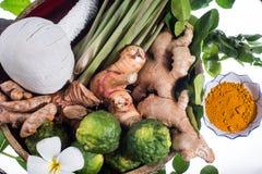 Φυσική herb spa σφαίρα μασάζ θεραπείας Στοκ φωτογραφία με δικαίωμα ελεύθερης χρήσης