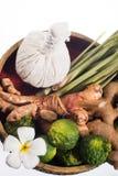Φυσική herb spa σφαίρα μασάζ θεραπείας Στοκ φωτογραφίες με δικαίωμα ελεύθερης χρήσης