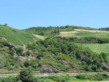 Φυσικοί αμπελώνες και terraced βουνοπλαγιές κατά μήκος του ποταμού του Ρήνου στοκ εικόνα