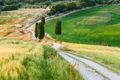 Φυσικός άσπρος αγροτικός δρόμος στην Τοσκάνη, Ιταλία Στοκ Εικόνα