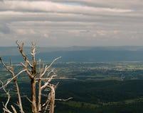 Φυσικός αγνοήστε το εθνικό πάρκο Shenadoah, Βιρτζίνια Στοκ Εικόνες