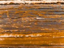φυσικός επάνω ξύλινος δαπέδων ανασκόπησης στενός Στοκ Φωτογραφία