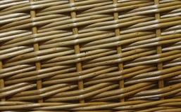 φυσικός ινδικός κάλαμος  Στοκ Εικόνα