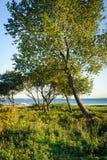 Φυσικός κόλπος του Ώρχους, Δανία Στοκ φωτογραφία με δικαίωμα ελεύθερης χρήσης