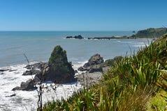 Φυσικός κόλπος Tauranga αποικιών σφραγίδων στη Νέα Ζηλανδία Στοκ φωτογραφίες με δικαίωμα ελεύθερης χρήσης