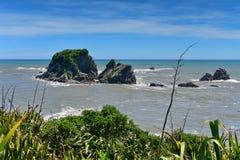 Φυσικός κόλπος Tauranga αποικιών σφραγίδων στη Νέα Ζηλανδία Στοκ Φωτογραφίες