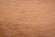 Φυσικός ξύλινος πίνακας Στοκ εικόνα με δικαίωμα ελεύθερης χρήσης