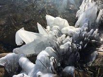Φυσικός πάγος Sculpures στη λίμνη Plöner Στοκ Φωτογραφίες