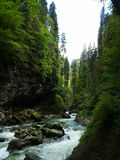 φυσικός ποταμός στοκ φωτογραφία με δικαίωμα ελεύθερης χρήσης