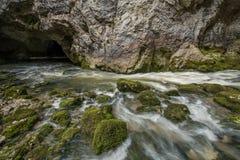 Φυσικός ποταμός Rak καρστ που εξαφανίζεται στο σύστημα σπηλιών στο εθνικό πάρκο Rakov Skocjan στη Σλοβενία Στοκ εικόνα με δικαίωμα ελεύθερης χρήσης