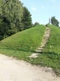 Φυσικός πράσινος ακαθάριστος φύσης Στοκ εικόνες με δικαίωμα ελεύθερης χρήσης