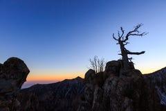 Φυσικός πυροβολισμός τοπίων βουνών της Κορέας στο εθνικό πάρκο Seoraksan υποστηριγμάτων Στοκ εικόνες με δικαίωμα ελεύθερης χρήσης