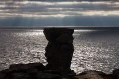 Φυσικός πύργος μπροστά από τον ωκεανό Στοκ φωτογραφία με δικαίωμα ελεύθερης χρήσης