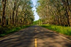 Φυσικός δρόμος σηράγγων. Στοκ φωτογραφία με δικαίωμα ελεύθερης χρήσης