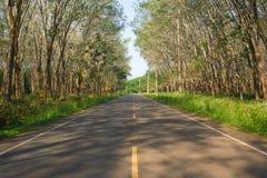 Φυσικός δρόμος σηράγγων. Στοκ Φωτογραφία