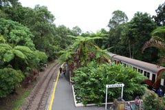 Φυσικός σιδηρόδρομος Αυστραλία Kuranda Στοκ Εικόνα