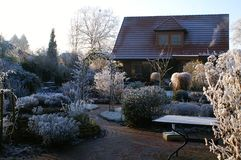 φυσικός χειμώνας κήπων Στοκ Φωτογραφίες