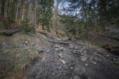 Φυσικό δάσος βουνών με τους βράχους και τους απότομους βράχους Στοκ Φωτογραφίες